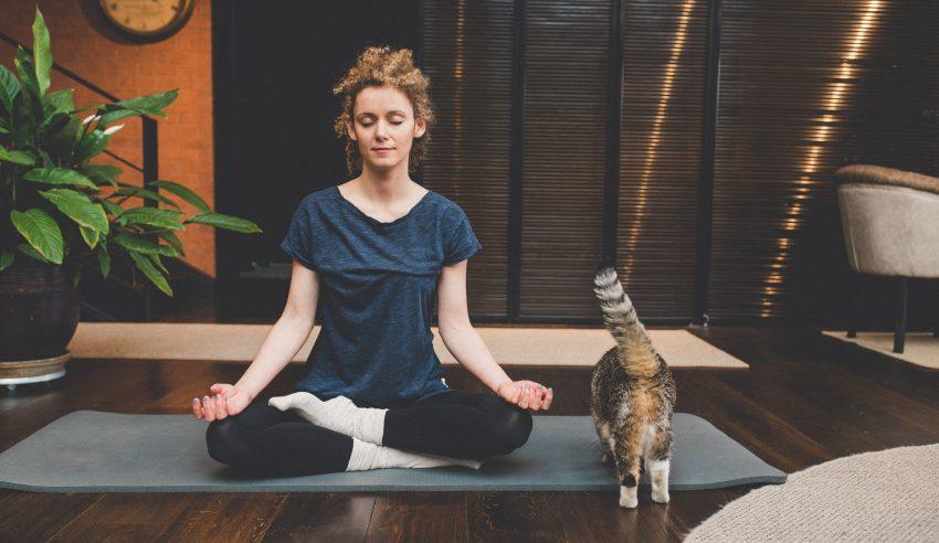 Medytująca kobieta z kotem