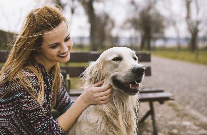 Co zrobić, aby bieganie z psem było jeszcze przyjemniejsze?