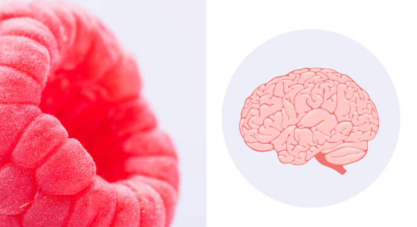 3 produkty na dobrą pamięć i koncentrację