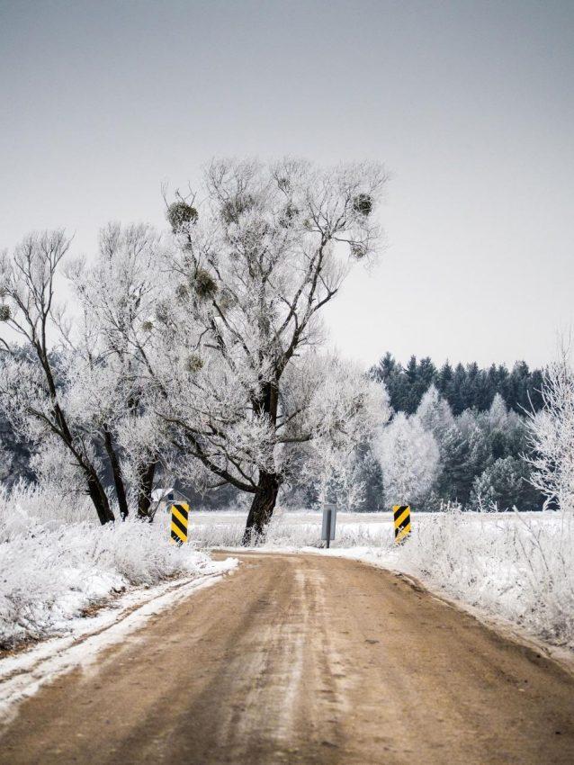 5 powodów, by wyjść z domu zimą