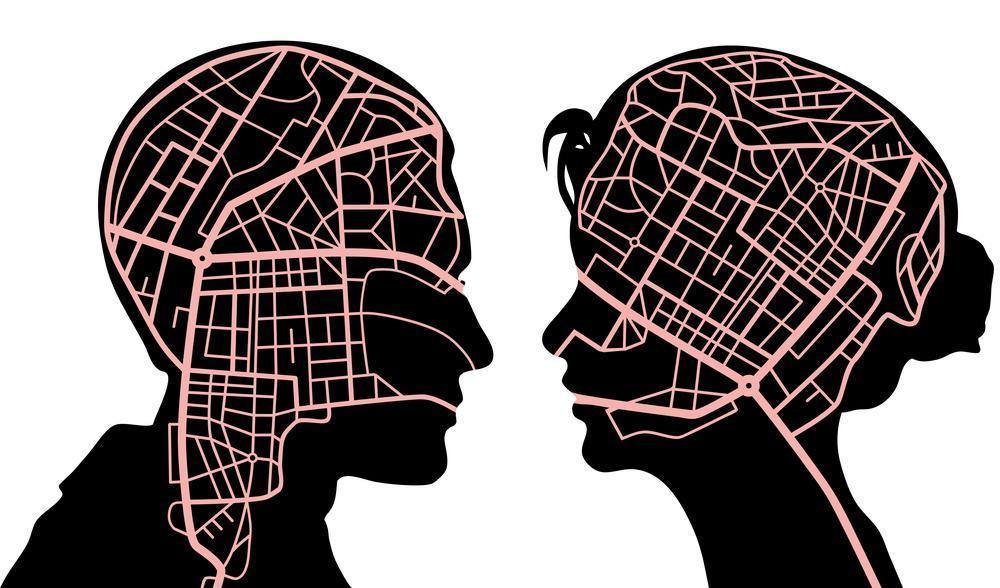 Kobiecy mózg – jaki jest naprawdę?