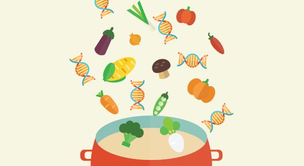 Nutrigenomika – jak karmić geny