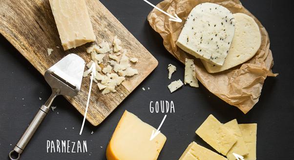 Co ty wiesz o serach?