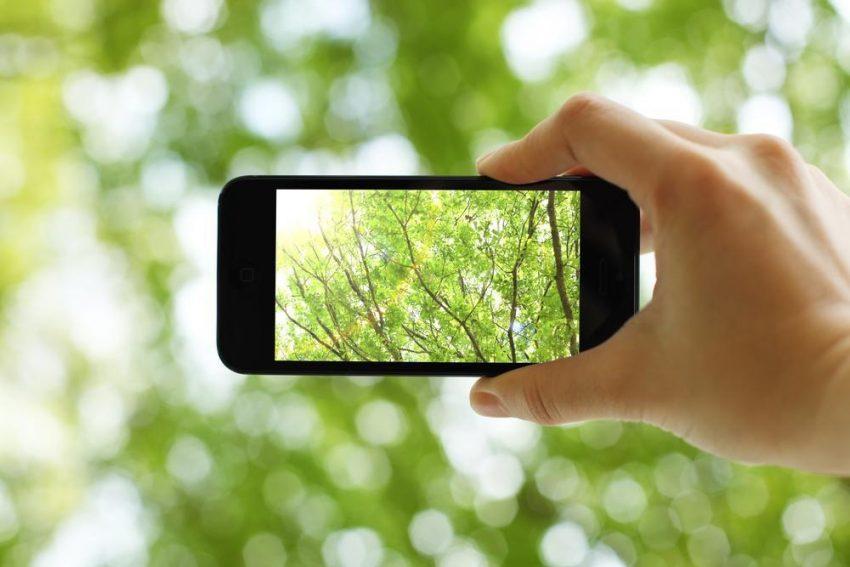 Smartfonowi podglądacze natury