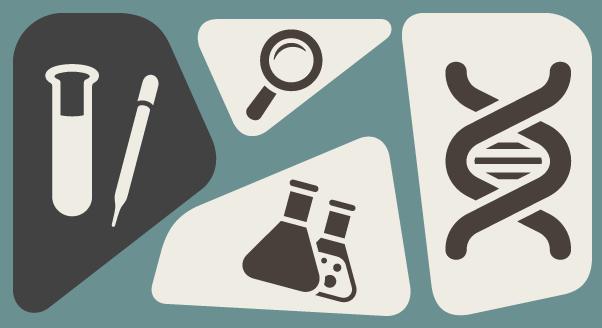 Epigenetyka – zdrowie to nie tylko geny