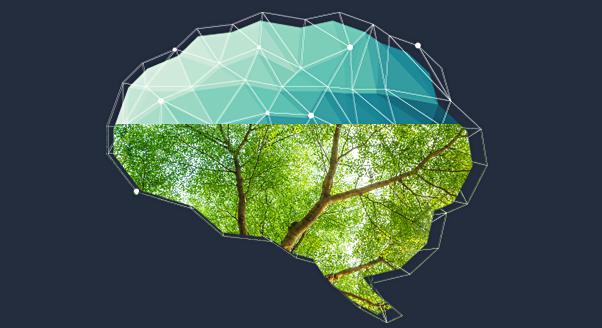Twój mózg kocha zieleń