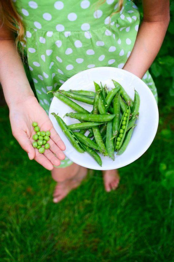 Owoce i warzywa bez przemycania