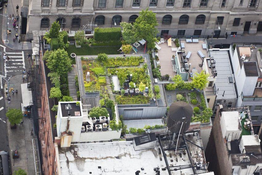 GALERIA: Miejskie ogrody z lotu ptaka