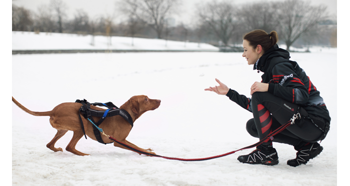 bieganie z psem canicross