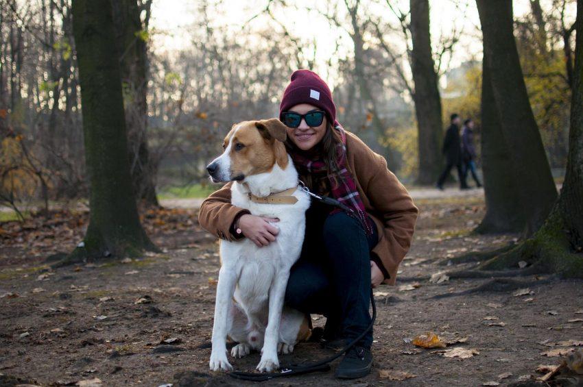 GALERIA: Drugie życie psa