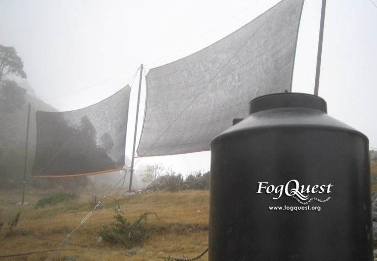 Ruszaj z siatką na mgłę