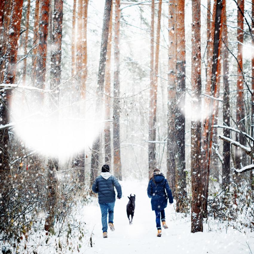 Spacer w towarzystwie – darmowy sposób na depresję