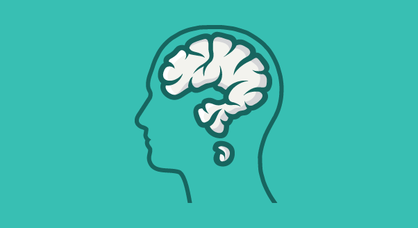 Co lubi mózg?