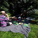 Chodźcie na piknik!