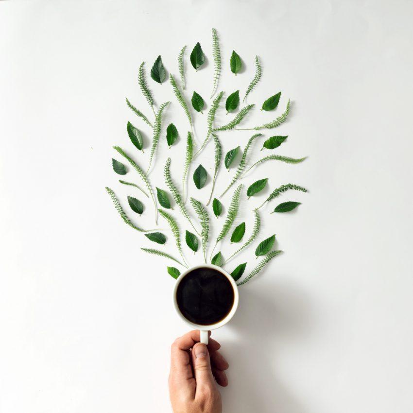 Kawa: zdrowa czy nie? Zależy od genów
