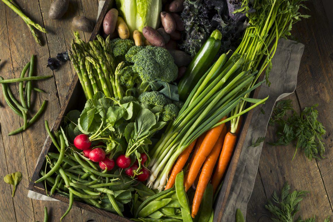 rzodkiew, brokuł, marchew, sałata