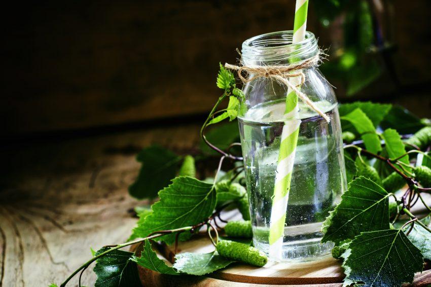 Szklanka ze słomką w środku, wokół liście brzozy
