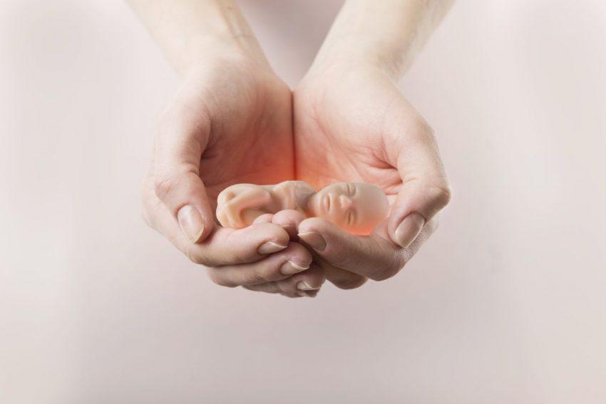 Kobieta trzyma w ręce miniaturę nienarodzonego dziecka