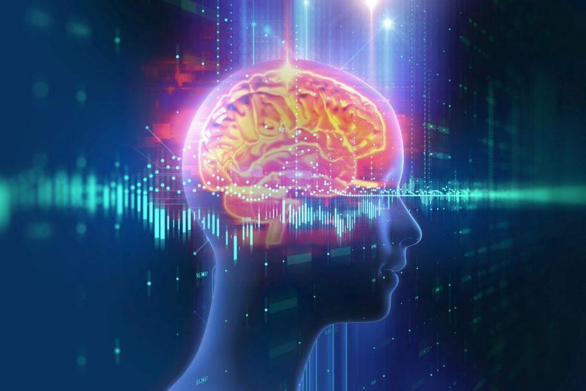 agnozja - mózg człowieka