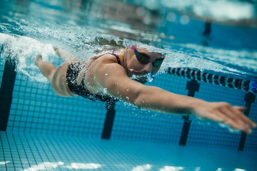 koebita nurkuje w basenie