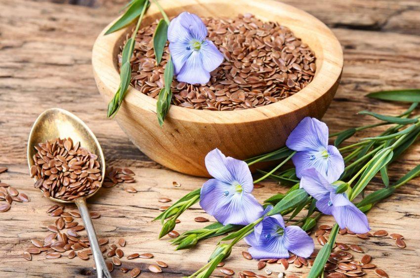 ziarenka nasion siemienia lnianego w miseczce