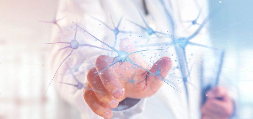 Lekarz w białym fartuchu dotyka wizualizacji połączeń nerwowych człowieka