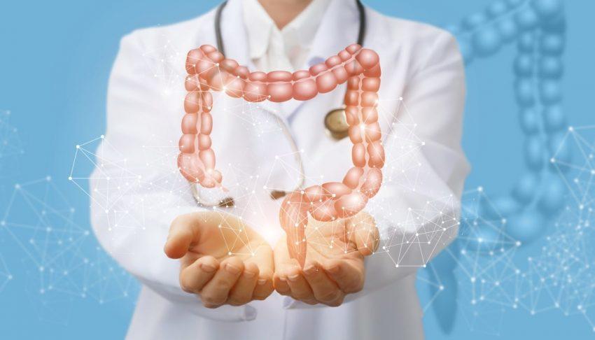ilustracja lekarz+jelita w 3D