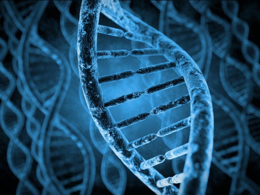 DNA w 3D
