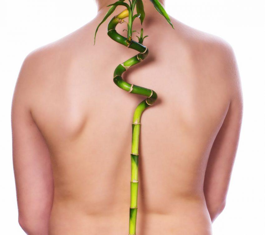 Kobieta z bambusem na plecach