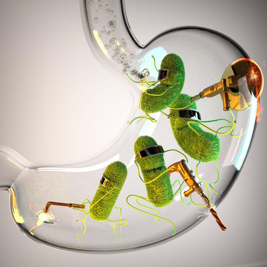 Bakteria helicobacter pylori - test, objawy, leczenie