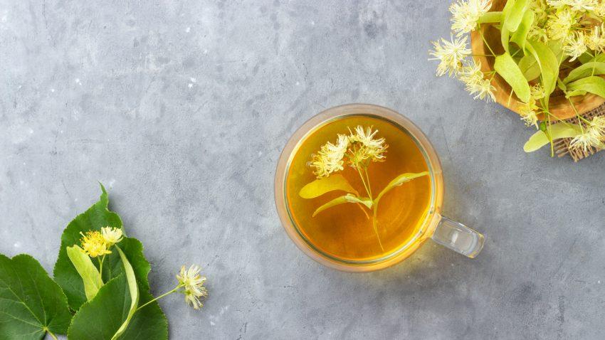 Lipa - na co jest dobra herbata z lipy? Właściwości i zastosowanie
