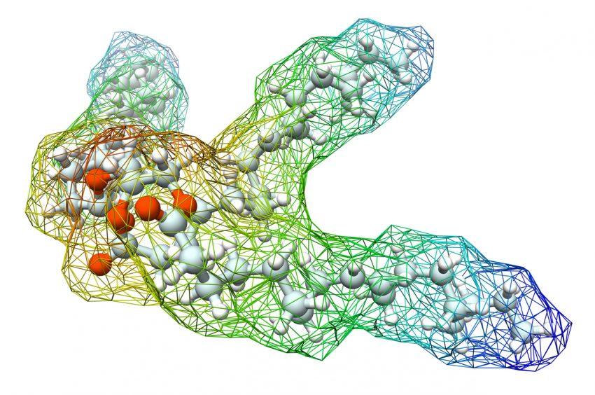 Trójglicerydy - ile wynosi norma? Co oznaczają podwyższone trójglicerydy?