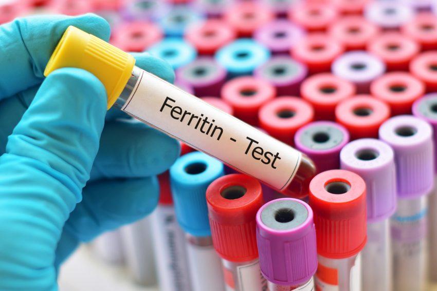 Ferrytyna - białko w ludzkim organizmie