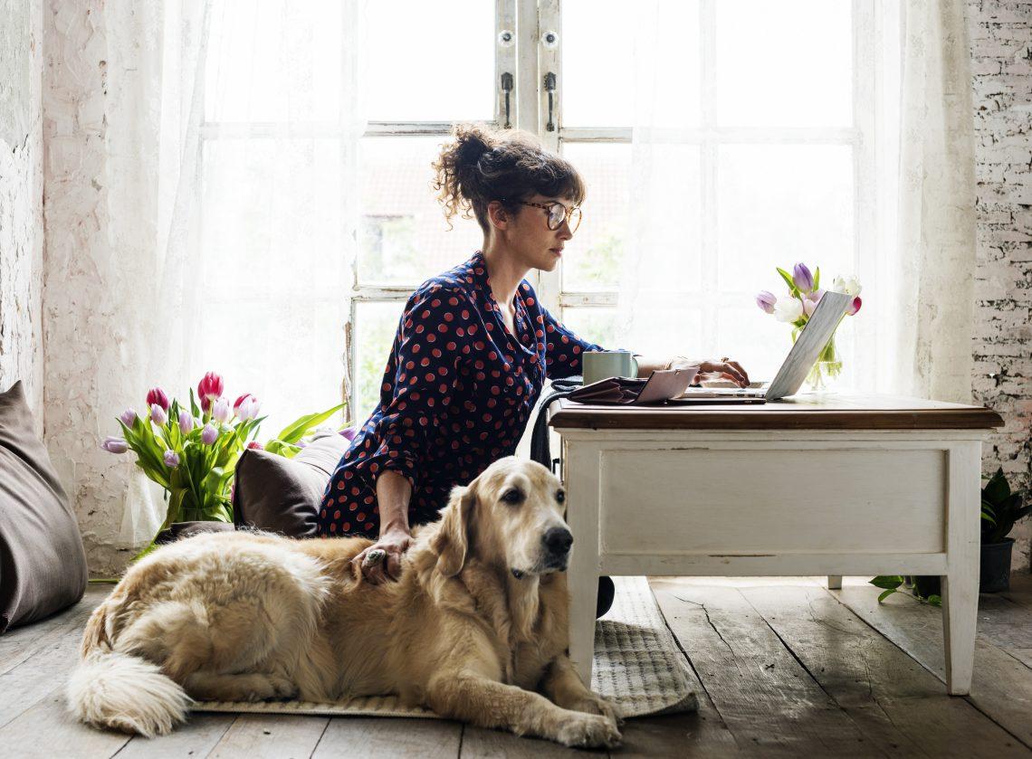 Kobieta siedzi przy biurku i czyta coś na laptopie. Obok niej siedzi duży pies, którego głaszcze jedną ręką