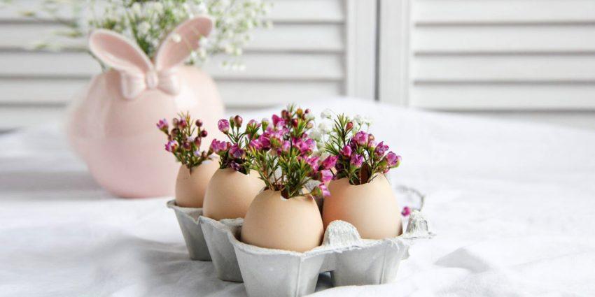 Co zrobić ze skorupkami jajek po Wielkanocy? Podpowiadamy, jak je możesz wykorzystać